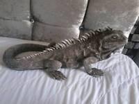 Silver iguana ornament