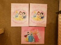 Disney princess a4 canvases