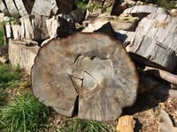 Fire wood sliced, seasoned and ready for splitting. Chop yourself and save money. £10 a slice.
