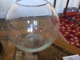 Gold fish bowl