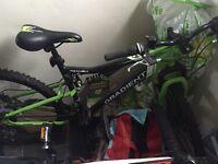 Adult/teenager bike