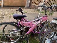 Trax TSF1 bike