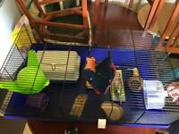 Large hamster cage with assesories