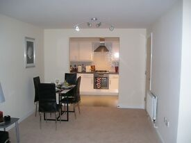 Two bedroom, two bathroom furnished exec apartment in prestigious gated development in Hatfield