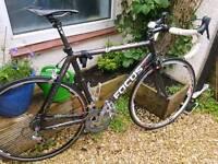 Focus Cayo Expert carbon road bike Large 56-58cm