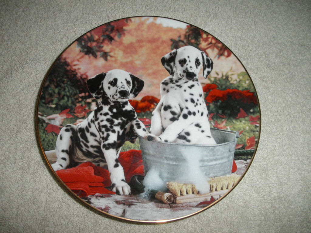 Limited Edition from the Hamilton Collection, Dalmatian Puppies