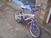Ammaco Toddler's Bike