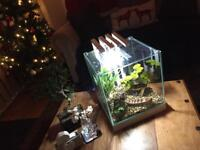 22l fish tank - Brand new - £50/ £55 for everything