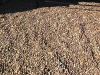 Free pebbles 20 mill 3 Ton must collect