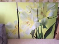 NEXT LARGE CANVAS PRINTS, SET OF 3 £20 ONO