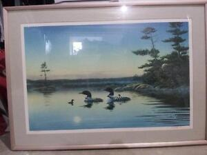 loon picture and old fasioned pictures Sarnia Sarnia Area image 1