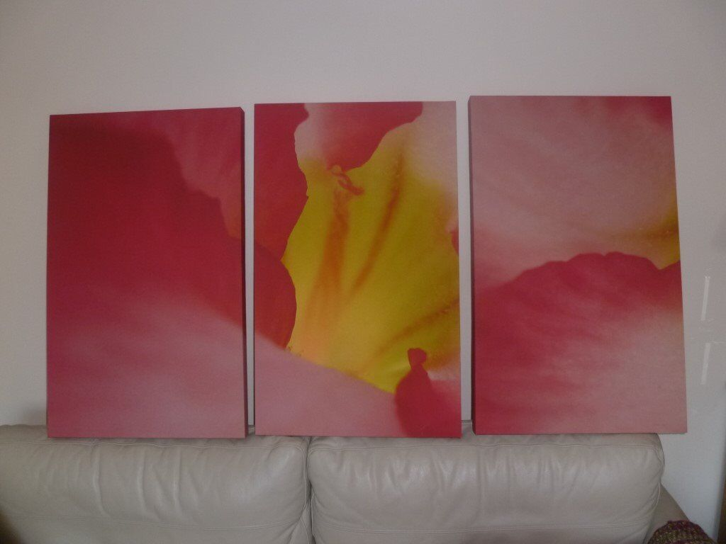 3 Prints All Hang Together In Woking Surrey Gumtree