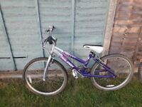 Girls Bike - purple Raleigh