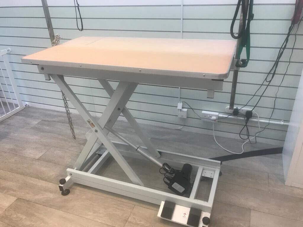 Surprising Pedigroom Professional Electric Dog Pet Grooming Tables With H Frame X 2 In Warrington Cheshire Gumtree Interior Design Ideas Tzicisoteloinfo