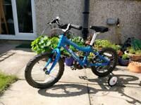 Ridgeback MX 16 bike
