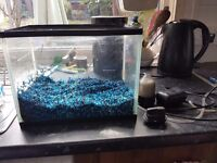 Small fish tank, sensible offers please