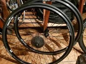 Giant SR-2 700c wheels