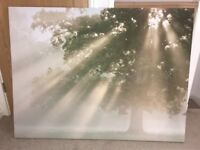 Next large tree wall art / picture
