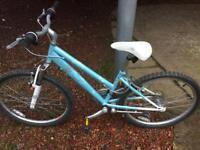 Tatty teddy girls bike