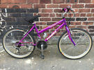 "Junior Girls 24"" Wheel Mountain Bike"