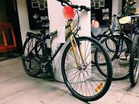 Giant Regents Park Townbike - medium