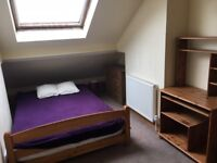 Great location, very nice house, attic room to let