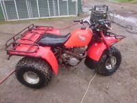 Honda 250 trike