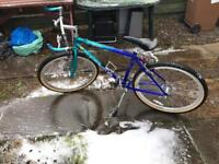 Claud butler adults bike