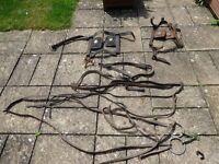 Job Lot Antique Cart Horse, Heavy Horse tack including 2 sets blinkers