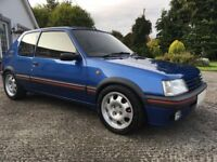 205 gti 1.9 wanted