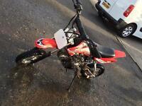 Pro xplorer 110cc like new