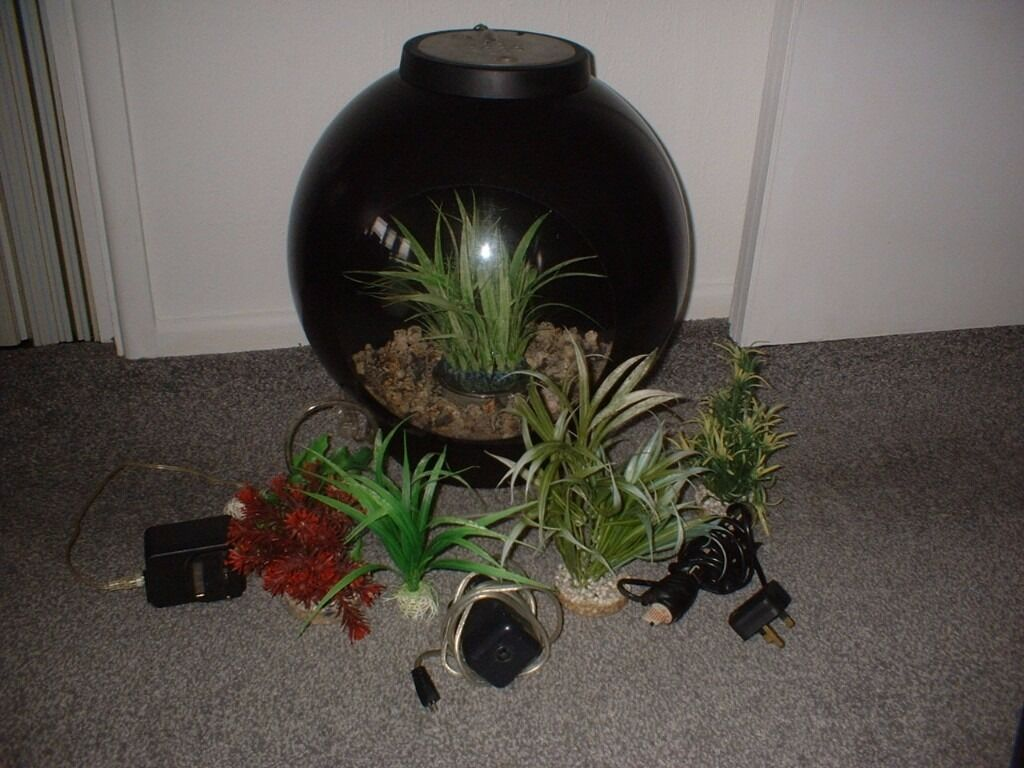 Bio orb (BLACKin Southampton, HampshireGumtree - Medium sized bio orb comes with all you see in picture plants stones etc not been tried selling for a friend collect lordshill oos