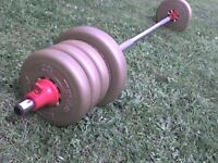 54.4 lb 27.7 kg Gold Dumbbell & Barbell Weights - Heathrow