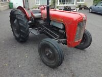 massey ferguson 35 tvo petrol live drive 1959 road registered logbook in my name