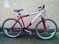 Large men's bike in good condition
