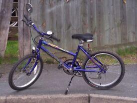 Raleigh Roller blaze Boys Bike