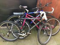 JOB LOT 3 ADULT BIKES SPARES OR REPAIRS