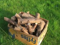 Logs for Sale suit larger woodburners chimineas firewood seasoned softwood Buyer collects £8 per box