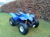 Quadzilla ram 100cc automatic kids or adults quad