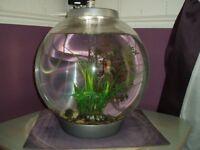 Bi-Orb 30 ltr Aquarium