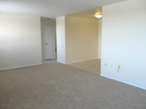 Modern 1 Bedroom Suites Available for Rent