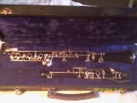 A SUPERB OBOE , by F. BUISSON ++++ AS NEW IN IT's CASE .++++++++++++++++++