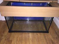 2FT Fish tank, £20 ONO