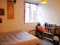 Flatmate needed for a bright double room in N1