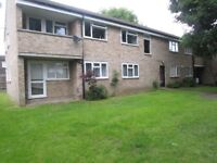 2 double bedroom council flat in surbiton exchange for a 3 bed house