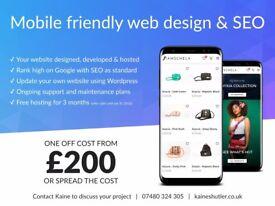 East Sussex web design, development, SEO from £200 - UK website designer & developer