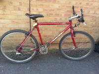 Gents Muddy Fox Bike