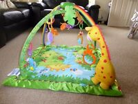 Fisher Price Baby Rainforest Play Mat/gym