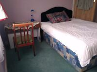 A large furnished bedroom to give on rent for a single person