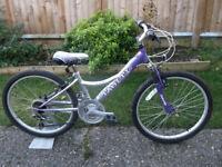 Girls Falcon Tahiti Mountain Bike - 12 Inch Frame - 18 Gears - 24 Inch Wheels - Stand - Suspension